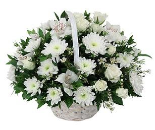 Flowers in design for Nomi fiori bianchi e gialli